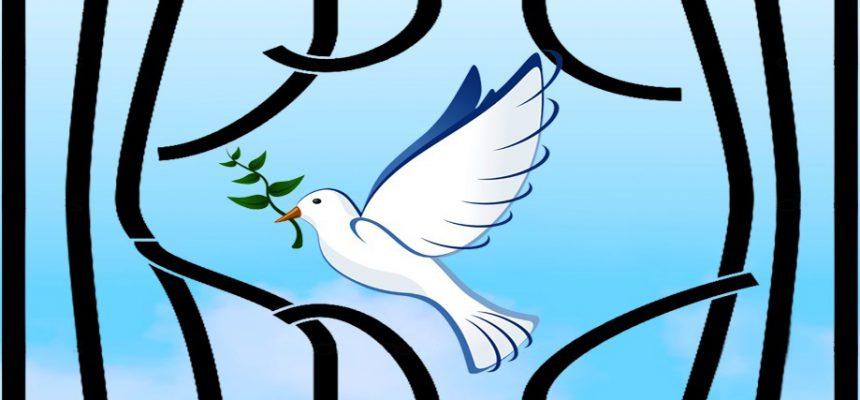 طرح جدید بنیاد امور خیریه نیکوکاران شریف به منظور آزادی زندانیان – جرائم غیرعمد