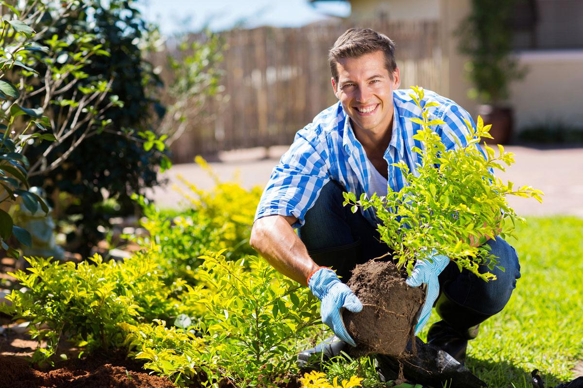 کمک به موسسات خیریه و کمک به سالمندان در باغداری