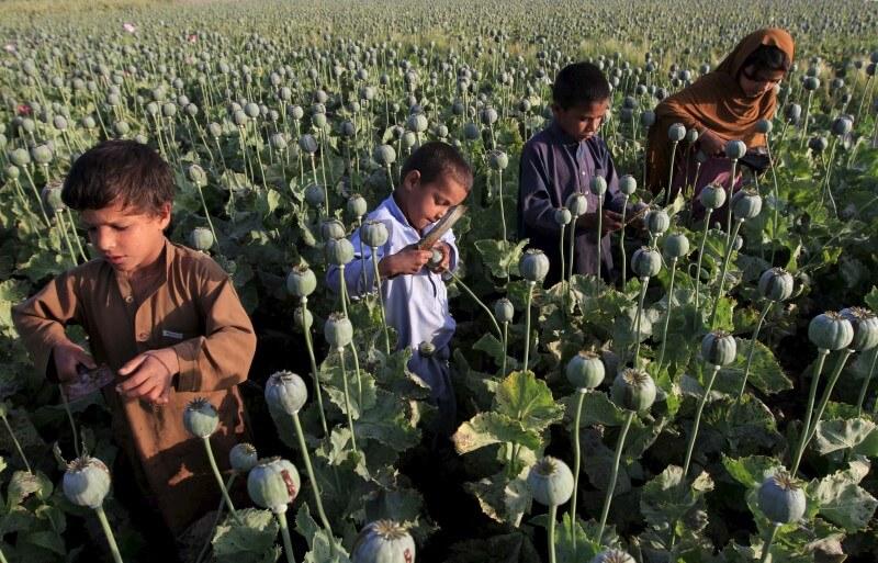 کمک به کودکان کار در یمن