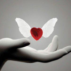 مهربانی را از حامیان نیک سرشت بیاموزیم