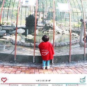 بازدید خردسالان مددجو از موزه حیات وحش