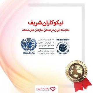 نیکوکاران شریف، درعرصه بینالمللی توانمند سازی زنان و دختران